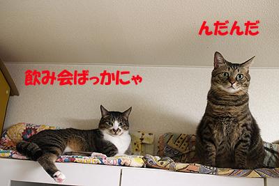 1-10-24-hのコピー.jpg