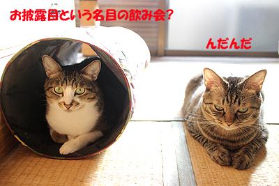 1-9-19-nのコピー.jpg