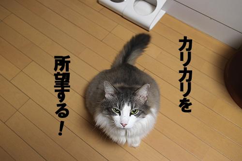 28-1-8-aのコピー.jpg