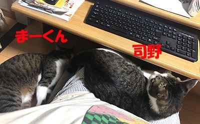 3-9-6-aのコピー.jpg