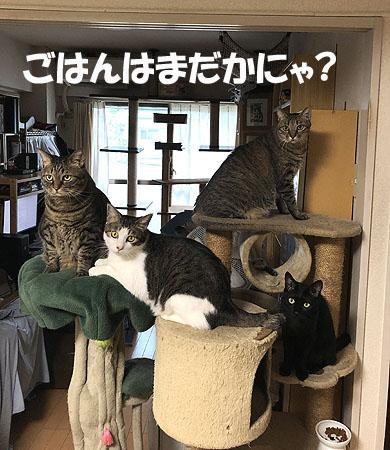 3-9-6-jのコピー.jpg