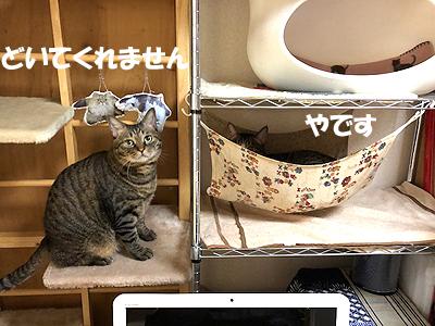30-11-2-aのコピー.jpg