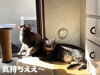 30-11-3-aのコピー.jpg