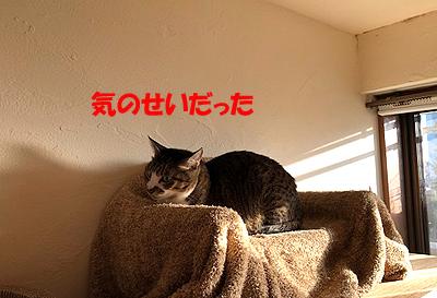 30-12-1-fのコピー.jpg